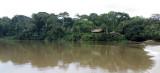 SANGHA LODGE - DZANGA NDOKI NATIONAL PARK CENTRAL AFRICAN REPUBLIC (35).JPG