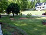 front yard.JPG