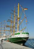 Tall Ships - 2843