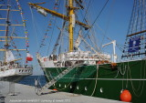 Tall Ships - 2851