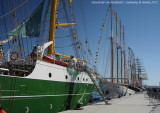 Tall Ships - 2855