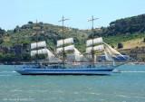 Tall Ships - 3183
