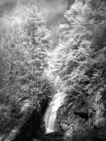 Campbell Falls_4262.jpg