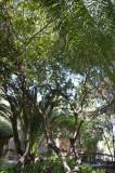 Garden of the Garden Tomb