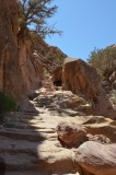 Petra Stairs IV