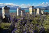 Beehives - Lake Aviemore, Canterbury