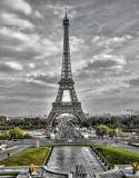 Paris Blk n Wht