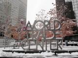 A snowy world