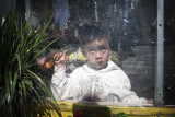 Boy In Flower Shop 20001