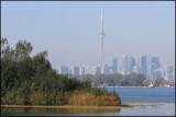 6194 Toronto Skyline.jpg