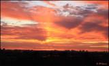 6246 Sunrise.jpg