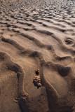 Sand ripplesP6121013