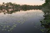 Waterbird site near sunsetP1000600