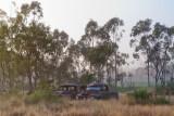 Wrecked utes foggy morningSAM_0259