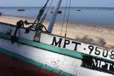 IMGP5105