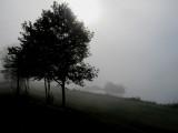 Ship in Heavy Fog