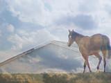 Big Barn in the Sky.