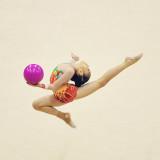 Singapore Gymnastics Open Championships 2011