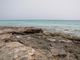 At Real Playa June 2012