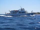 Aquabus Joven Antonia II Going Towards Formentera
