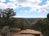 Massive Mesa Verde!
