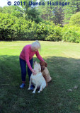 Beverly With Her Dogs