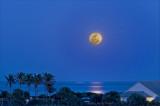 moon in blue
