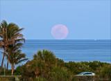 pink moonrise