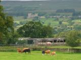 Castle  Bolton  has  a  commanding   view.