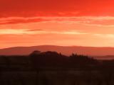 A  blood  red  dawn  over  Sandhills.
