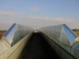 The  Wealdway  long  distance  footpath