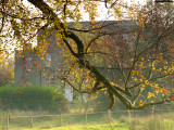 C 15th century Ifield  Court, in  the  shade  of  a  tree.