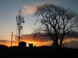 Radio  Relay  Station  and  tree  at  sunrise