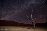 Deadvlei tree & Milkyway