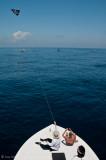 flying my Kite