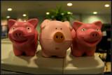 3 little piggies