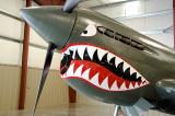 Curtiss P40 Kittyhawk - Grrrrr