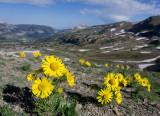 Grand Teton NP 2012