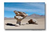 Rocher de Dali desert de Sololi