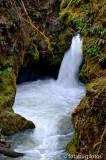 Falls Along Fall Creek Road