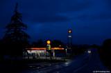 Shell In The Dark
