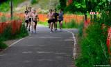 Friendly Runner On Pre's Trail