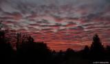 Red Sky In Morning, Sailors Take Warning