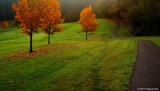 A Very Pleasant Path