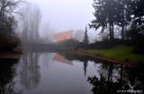 Cuthbert Amphitheater in Fog