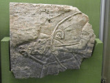 Assyrian relief carving