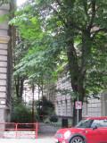 a nice neighborhood passage