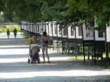 crossing the highway, we're in Ljubljana's Tivoli garden...