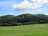 ...through the fields and forests of South Bohemia