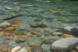 Clear waters - Cascade Creek 2